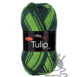 Tulip color - 5212